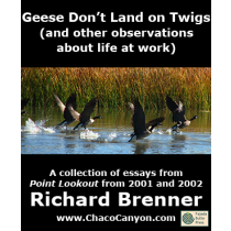 Geese Don't Land on Twigs (and other observations about life at work)