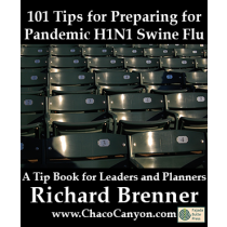 101 Tips for Preparing for Pandemic H1N1 Swine Flu, 10-pack