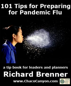 101 Tips for Preparing for Pandemic Flu, 10-pack