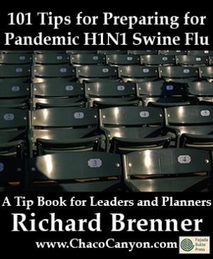 101 Tips for Preparing for Pandemic H1N1 Swine Flu, 10-pack