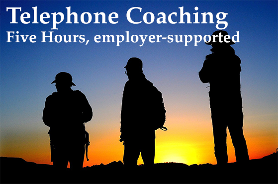 Five Hours of Telephone Coaching, Introductory, employer-supported