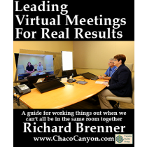 Leading Virtual Meetings for Real Results